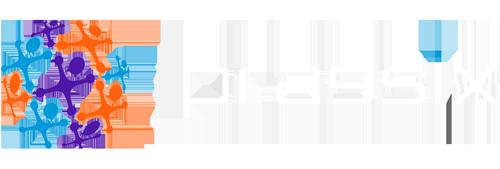 PRAGSIX-logo-Officiel-head500-169